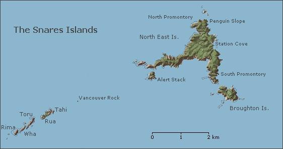 Snares-islands-new-zealand